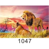 Buy cheap Custom 3D Lenticular Printing 60*80cm / Wall Poster 3D Animals Photos product