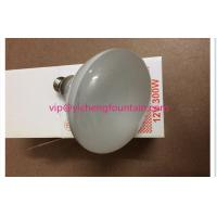 Buy cheap E27 Screw 12V 300W Halogen Bulb Replacement For LED Underwater Pool Lights product