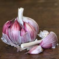 Buy cheap Chinese The Hot Fresh New Crop Garlic 5.5cm+ from wholesalers