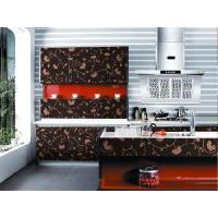 Buy cheap Glossy UV MDF With Designs for Kitchen Cabinet (ZH C858) product