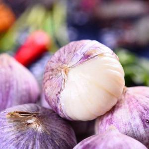 Buy cheap Single Clove Garlic Vacuumize Packing product