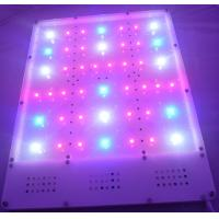 Buy cheap Full Spectrum 720W Hydroponics Lighting LED Grow Light product
