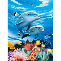 Buy cheap BSCI Lenticular 3D Pictures For Hotel Decoration / 3D Animals Photos product