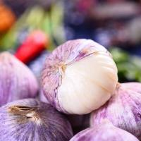 Buy cheap Shandong Purple Garlic with High Quality product