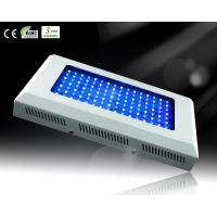 Buy cheap 120W White&Blue LED Aquarium Light for Reef Growth product