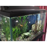 Buy cheap Led fish lights and reef lights product