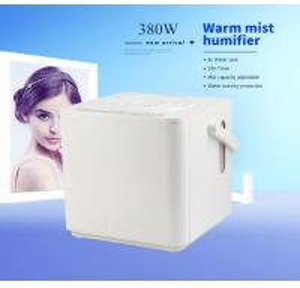 China Two Level Humidification Warm Mist Humidifier PTC Heating Noiseless For Sleep on sale