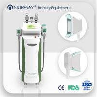 China Low price fat freezing cryolipolysis vacuum slimming beauty machine on sale