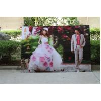 Buy cheap 3D Lenticular Printing PS 3D Lenticular Picture Printing by injekt printer or UV from wholesalers