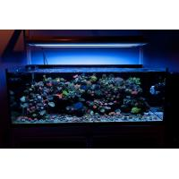 Buy cheap fish tank 55x3w led aquarium light for marine &coral reef product