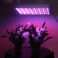 Buy cheap 2012 New Promotional LED Grow Light For Medical Plants Growth product