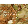 Buy cheap Jade Design Pet Heat Transfer Film Plastic Foil Roll product