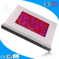 Buy cheap 600W LED Grow Light Ratiotailored product
