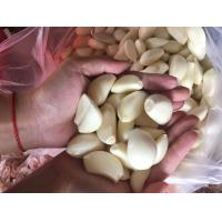 Buy cheap New Crop Frozen Fresh Peeled Garlic product