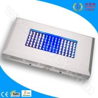 Buy cheap 90W Aquarium LED Light for Coral Reef product