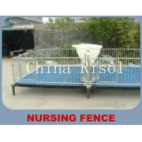 Buy cheap Galvanized pipe piglets raising fence product