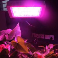Buy cheap 3W chip outdoor LED Grow Light tube greenhouse product