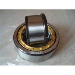 skf roller bearing - Popular skf roller bearing