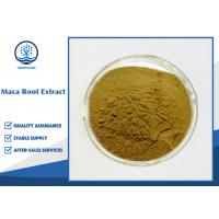 Buy cheap Male Sexual Enhancement Maca Root Extract / Yellow Brown Maca Root Powder from wholesalers