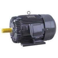 Buy cheap AEEF Fully Enclosed Air Cooled 3 Phase Squirrel Cage Motor Corrosion Resistant product