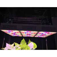 Buy cheap Aluminum 570w Full Spectrum Grow Light LED CREE COB With CE RoHS Approval from wholesalers