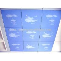 Buy cheap Blue Sky Decorative Square Ceiling product