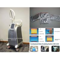 China Fat Freeze Cryolipolysis Body Slimming Machine Fat Burning Equipment With Cooling Technology on sale