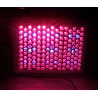 Buy cheap High quality led plant grow light for growing and flowering product