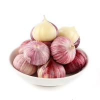 Buy cheap High Quality Dried Garlic Powder Low Garlic Price Dehydrated Garlic Manufacturer product