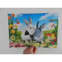 Buy cheap china OK3D factory plastic Lenticular Printing Photo-3D motions effect flip photo decoration lenticular photo product