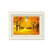 Quality PS / MDF Frame Nature Scenery 5D Pictures / Lenticular Poster Printing for sale