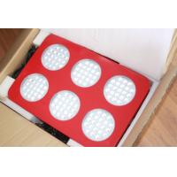 Buy cheap high quality LED light for essential oil from wholesalers