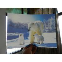 Buy cheap OK3D home decoration and advertising exhibition 3d art photos printing wedding photos with magic 3d lenticular effect product