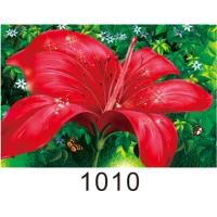 Buy cheap 0.6mm PET+157g Coated Paper 3D Lenticular Pictures With 40*60cm Size product