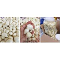 Buy cheap 2019 new peeled garlic product
