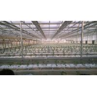 Buy cheap Hydroponic Coconut Fiber Filled Plant Growing Bags from wholesalers