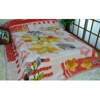 Buy cheap Comfortable Home 100% Polyester Blanket For Adults , Double Printed 2 Ply Blankets product