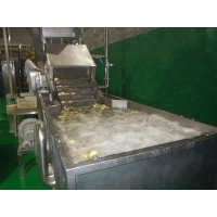 Buy cheap SUS304 10TPH Fruit Vegetable Washing Machine Stepless Shift product