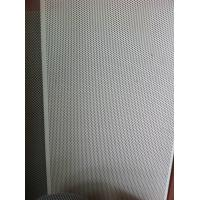 Quality Micro Hole Fine Wire Screen Perforated Metal Sheet For Decoration / Protection 0.1mm for sale