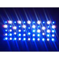 Buy cheap 2012 New Devised216W(72*3W) LED Grow Light Indoor Usage for Plants Growth product