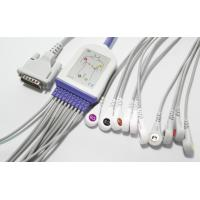 Buy cheap Snap 12 Leads EKG Cable , Schiller 10 Leads GE ECG Cable For AT1 2 3 5 AT60 AT104 CS100 product