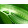 Buy cheap Eco-Friendly Bamboo Fiber Realistic 3d Decorative Wall Panels Environmental Protection product