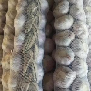 Buy cheap Fresh Garlic Braids, Fresh Garlic Normal White product