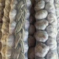 Buy cheap Wholesale New Crop Sack Fresh Braid Garlic product