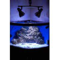 Buy cheap 120W led Aquarium light for coral reef product