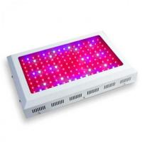 Buy cheap 3 watt LED diode Grow Light hydroponic wholesale product