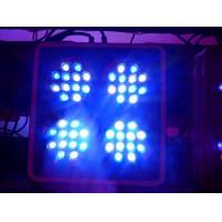 Quality Apollo-4 LED Coral Reef Aquarium Lights with 2 Switches and 2 Power Cords for sale