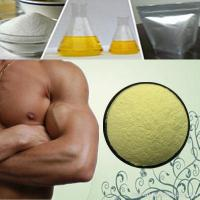 Buy cheap Post Cycle Therapy Steroids Chlormadinone Acetate 99% 302-22-7 Estrogen Steroids Powder from wholesalers