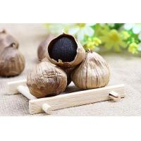 Buy cheap Organic nutritious health benefits whole bulb black garlic product