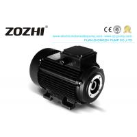 Buy cheap HS Series Three-Phase Asynchronous Motors With Hollow Shaft product